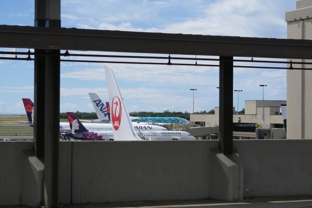 ホノルル空港 ANAラウンジへのバス停から見えるホヌA380